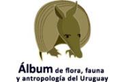 Álbum digital - Proyecto AGESIC